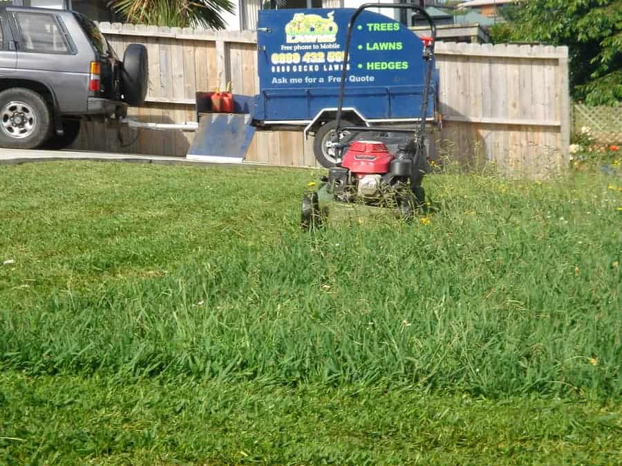 How to set up a lawn